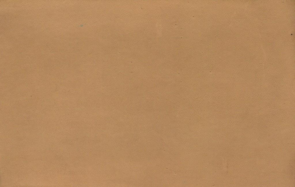 leather-texture-cream