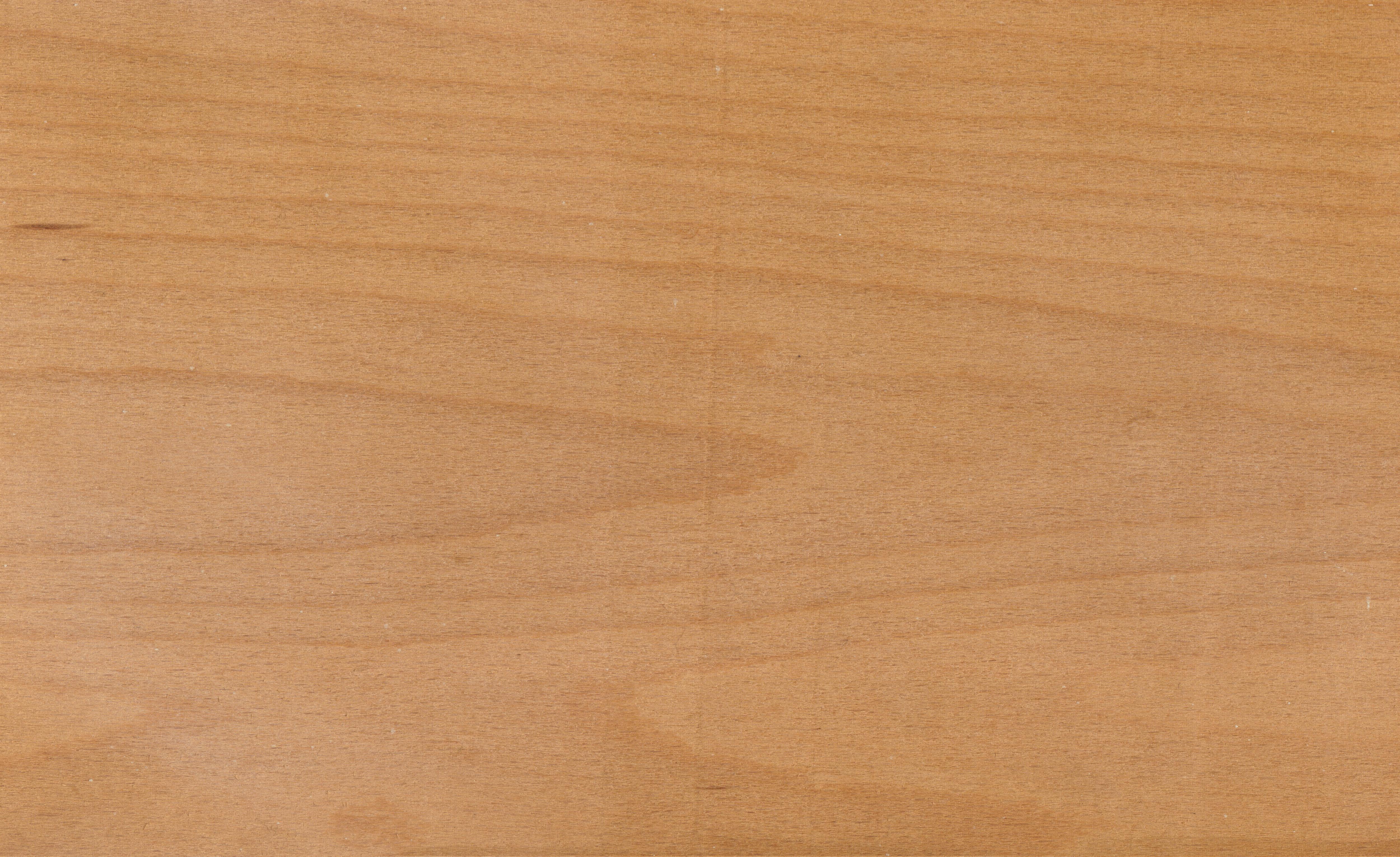 What Color Is Beech Wood ~ Background vector free joy studio design gallery best