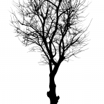 Black Tree Vector (SVG, PNG)