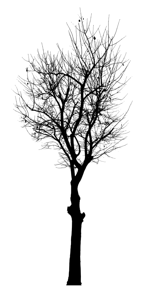 black-tree-vector