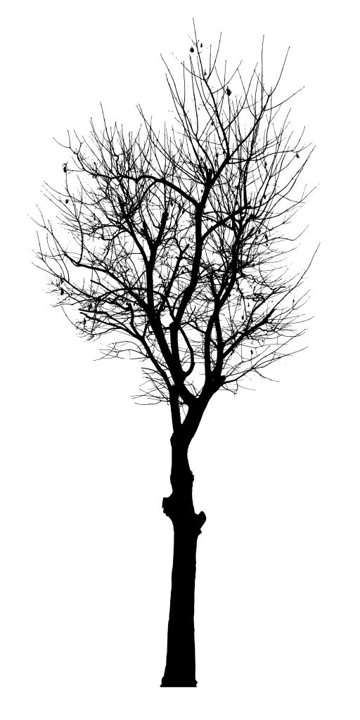 Black Tree Vector (SVG, PNG) | OnlyGFX com