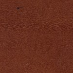 Brown Leather Texture (JPG)