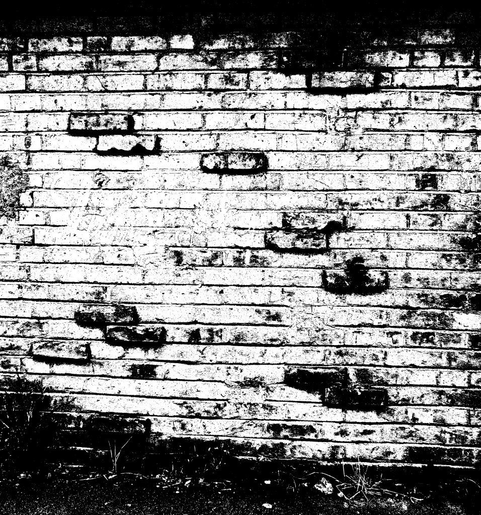 Black and white brick wall