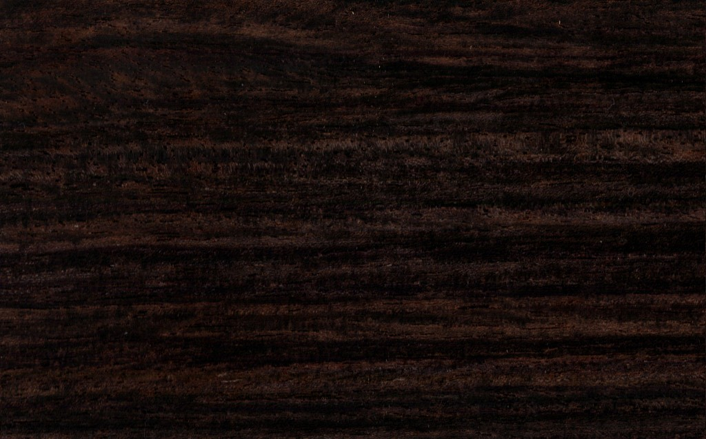 Sexy black ebony-1210