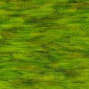 Green Paint Texture (JPG)