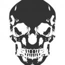 Human Skull Vector (EPS, SVG, PNG)
