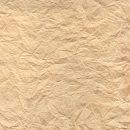 Brown Wrinkled Paper Texture (JPG)