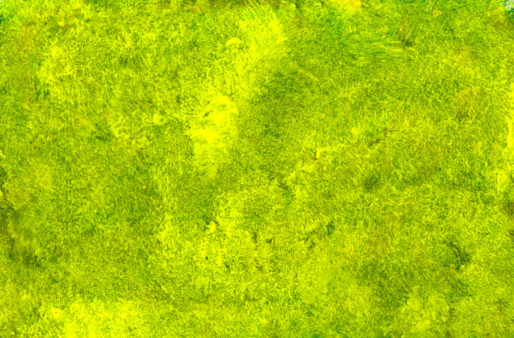 yellow-green-paint-texture