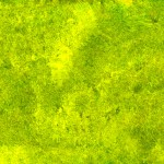 Yellow-Green Paint Texture (JPG)