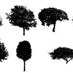 7 Black Tree PNG Image Transparent