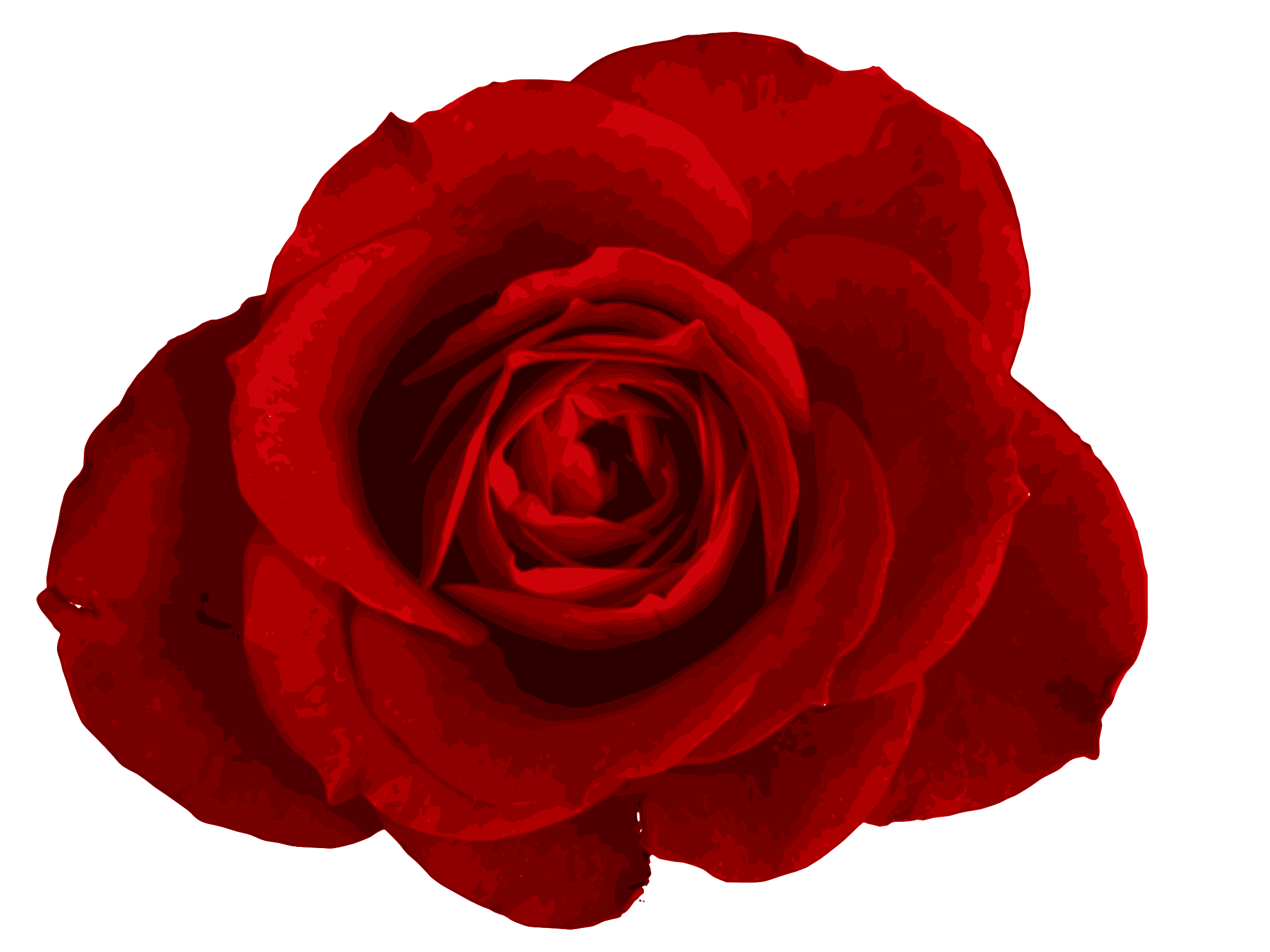 Red Rose PNG Image Transparent | OnlyGFX.com for Transparent Png Images Roses  303mzq