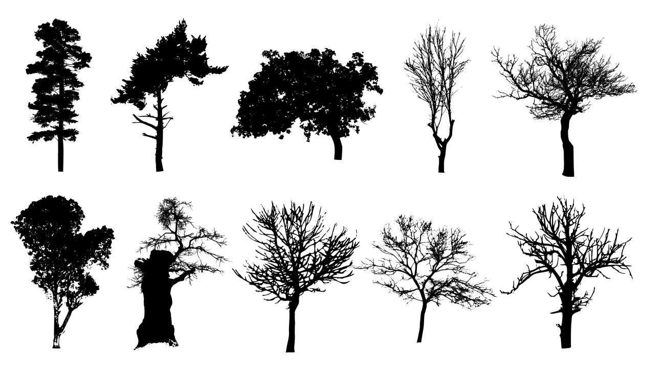 10 Tree Silhouettes (PNG Transparent Background) | OnlyGFX com
