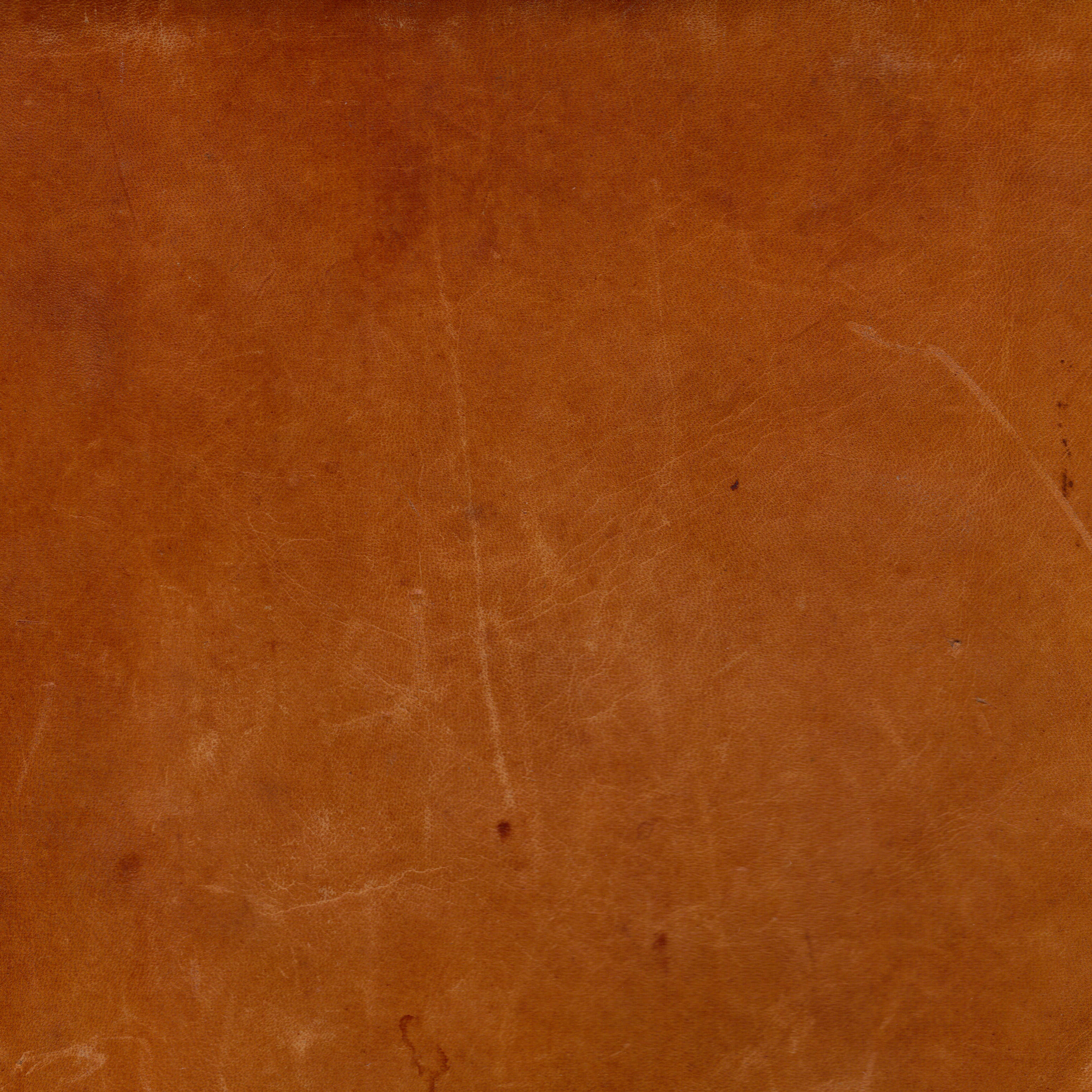 smooth brown leather textures  jpg