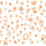 Flower Doodle Background (PNG)