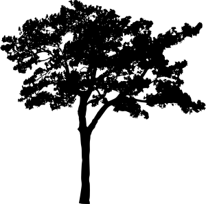 tree-silhouette-2-19