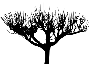 tree-silhouette-2-20