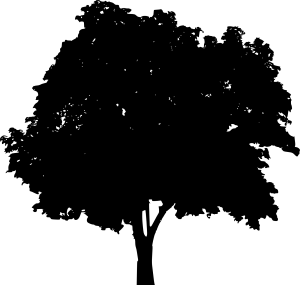 tree-silhouette-2-34