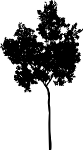 tree-silhouette-2-45