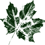 10 Printed Leafs (PNG Transparent)
