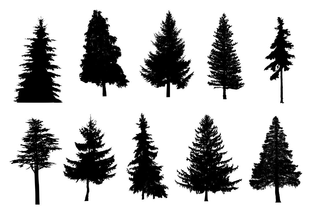 10 Pine Tree Silhouette Png Transparent Onlygfx Com