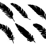 6 Simple Feather Silhouettes (PNG Transparent)