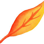 6 Watercolor Yellow Leaf (PNG Transparent)