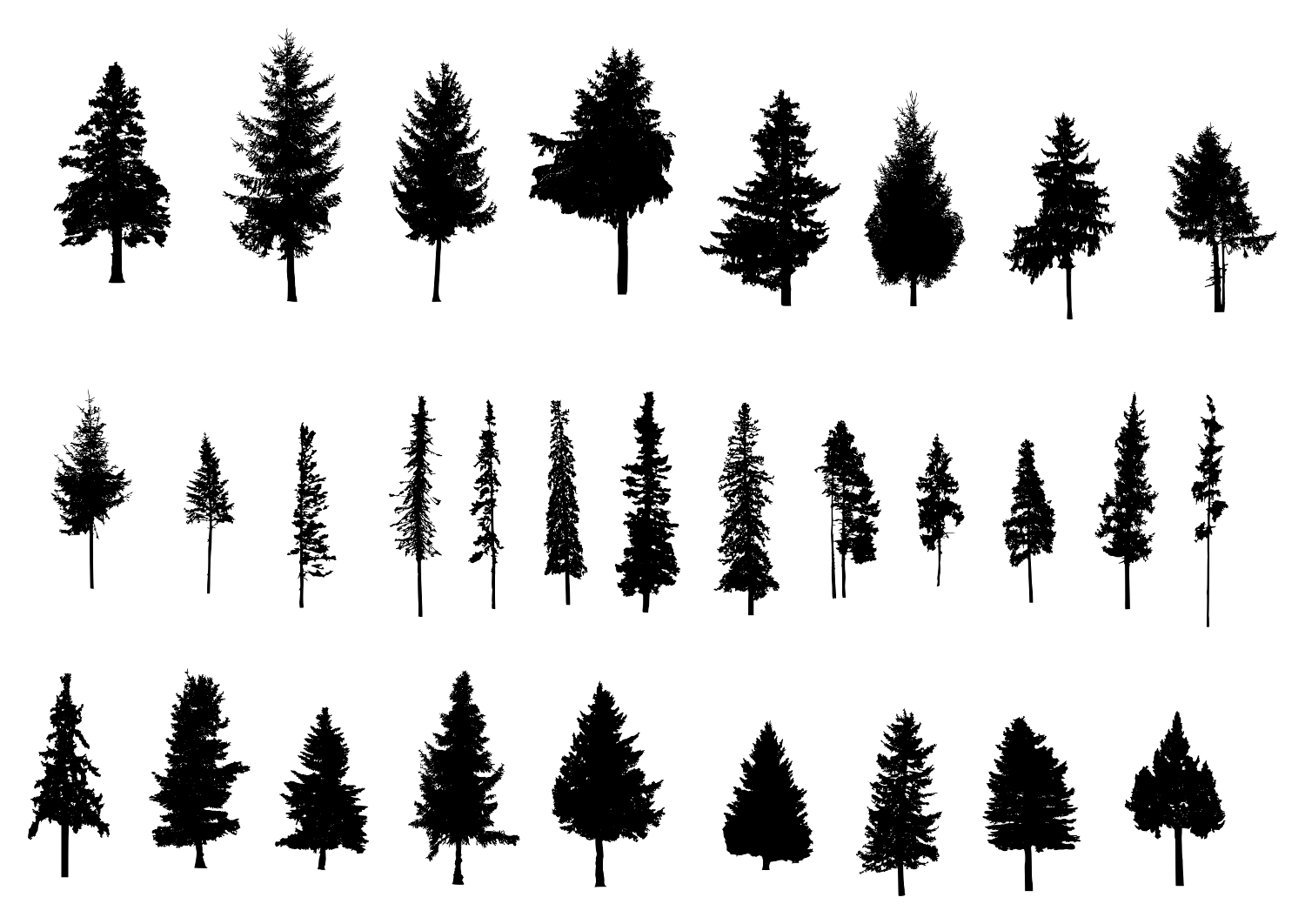 30 Pine Tree Silhouette (PNG Transparent) Vol. 2 | OnlyGFX.com