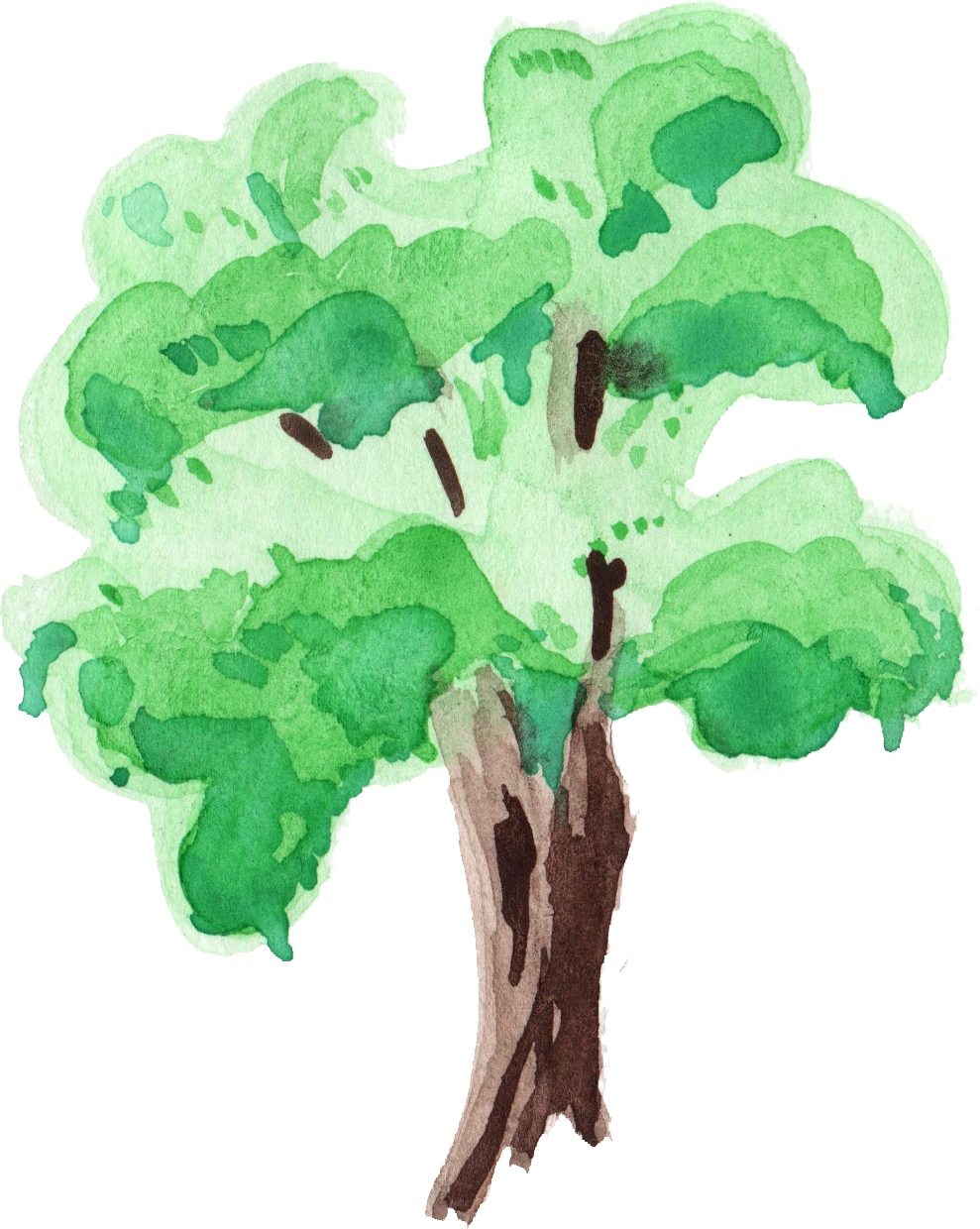 12 Watercolor Tree (PNG Transparent) | OnlyGFX.com