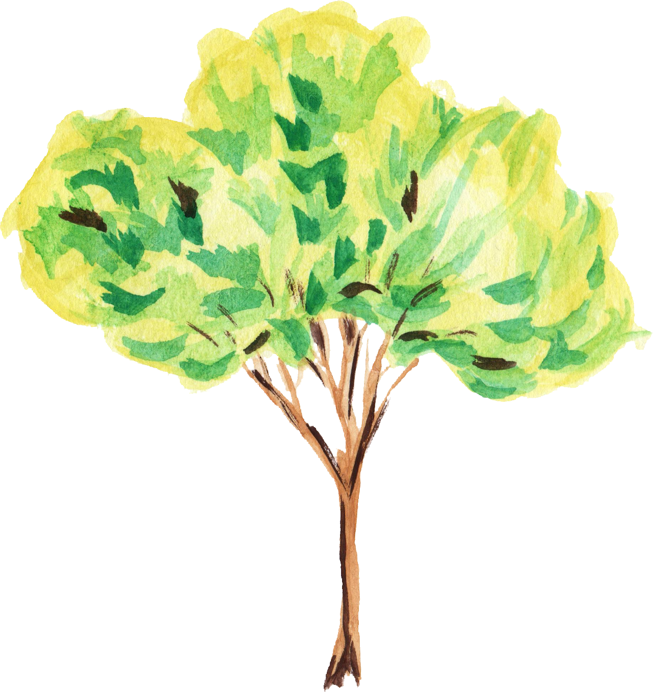 12 Watercolor Tree (PNG Transparent) | OnlyGFX com