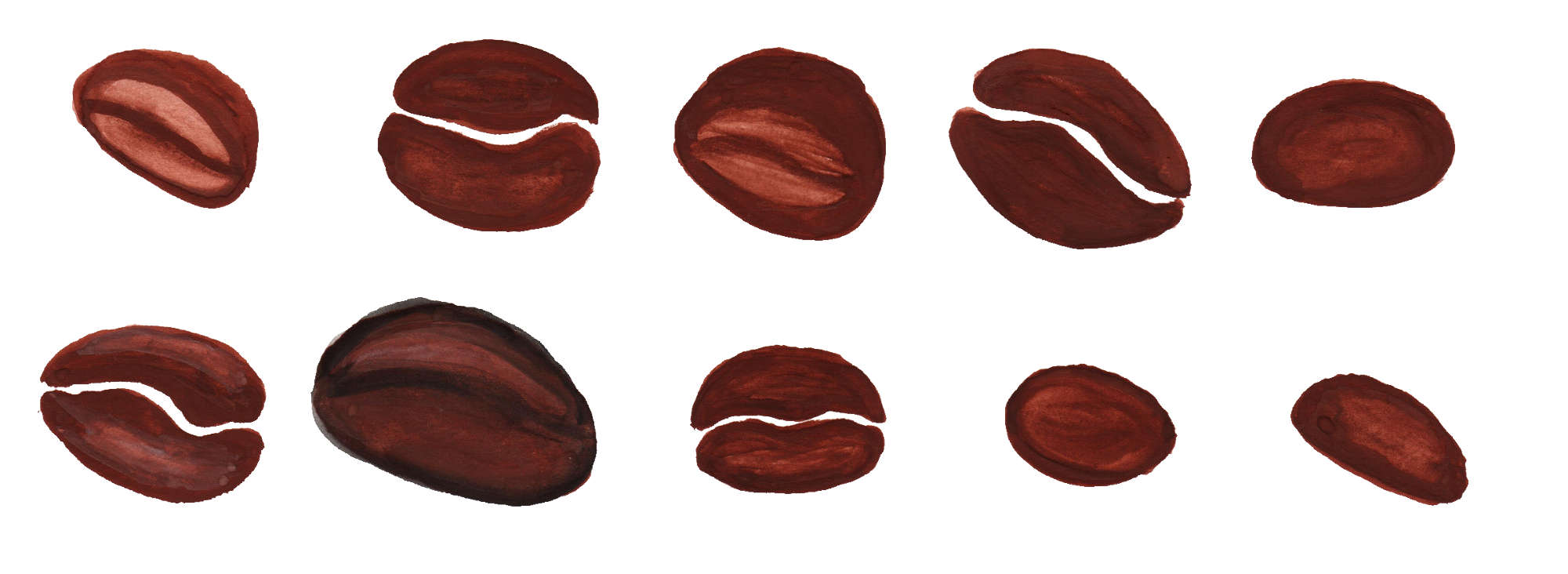 10 watercolor coffee bean png transparent for Coffee watercolor