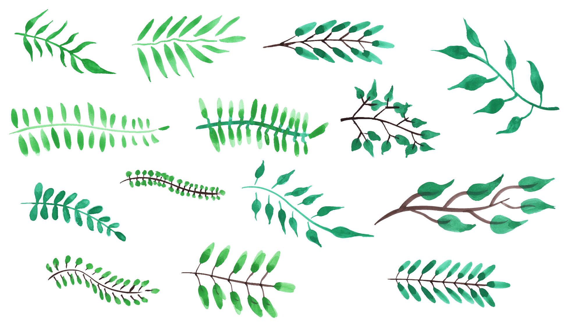 14 Watercolor Leaf PNG Transparent Vol 5