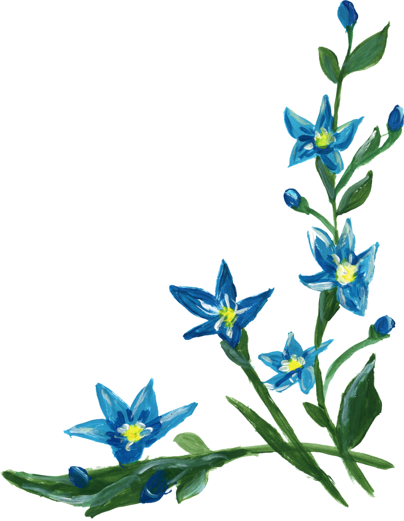 9 Flower Corner (PNG Transparent) | OnlyGFX.com