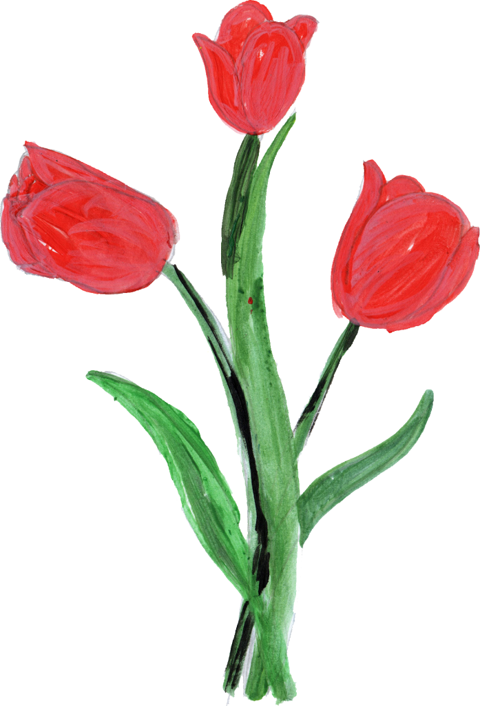 10 Paint Flower Png Transparent Onlygfx Com