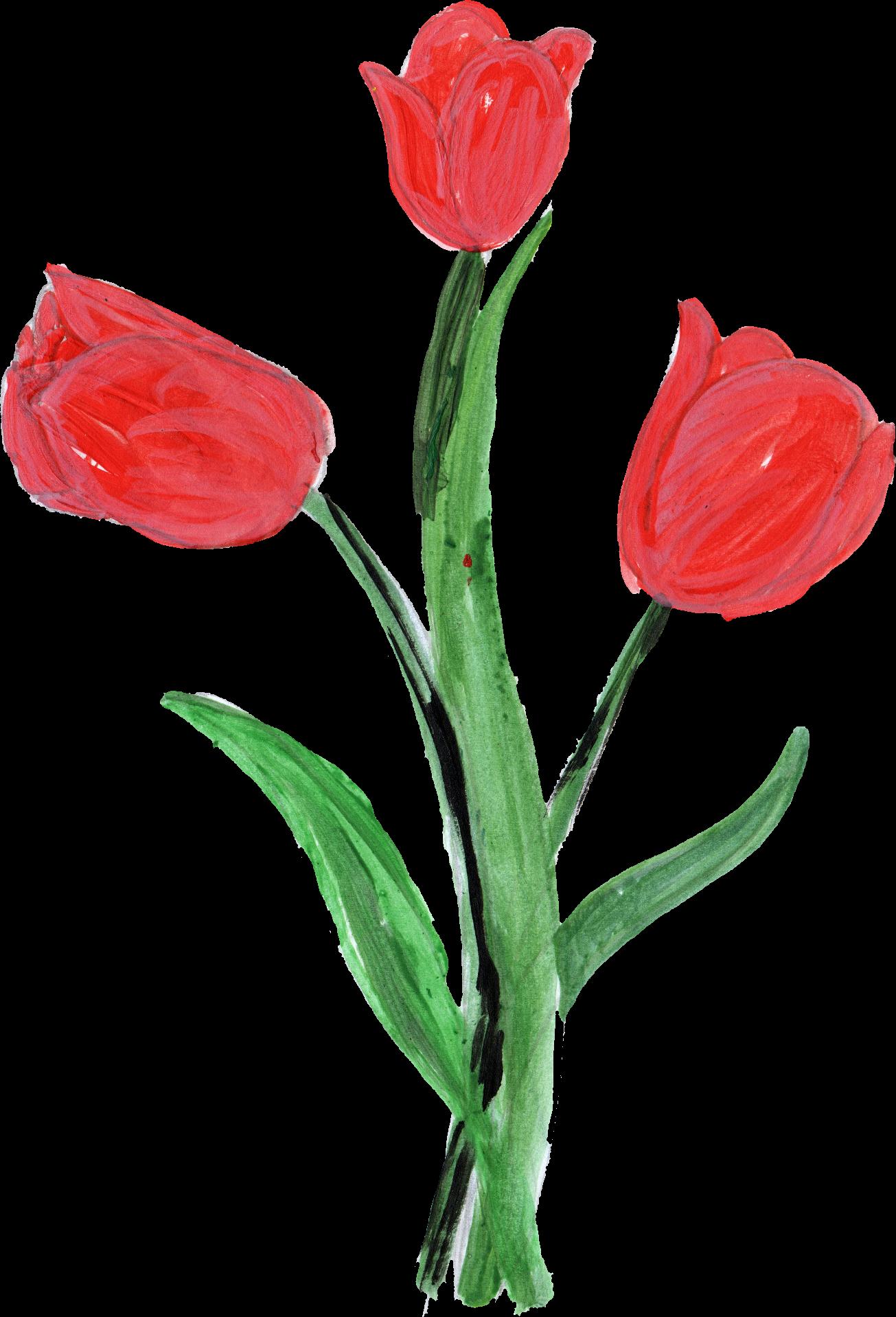 10 Paint Flower Png Transparent Onlygfx Com