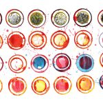 24 Colorful Watercolor Circle (PNG Transparent)