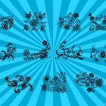 11 Flower Ornaments (PNG Transparent, SVG)