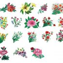 17 Paint Flower Ornament (PNG Transparent) Vol. 5