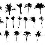 20 Palm Tree Silhouette (PNG Transparent) Vol. 2