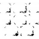 8 Simple Flower Frame (PNG Transparent)