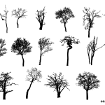 18 Bare Tree Silhouette (PNG Transparent) Vol. 2