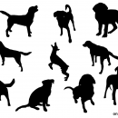 10 Dog Silhouette (PNG Transparent)