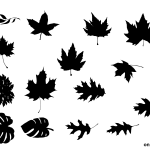 15 Leaf Silhouette (PNG Transparent)