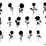 17 Rose Silhouette (PNG Transparent)