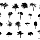 20 Tree Silhouette (PNG Transparent) Vol. 2