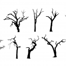 10 Spooky Dead Tree Silhouette (PNG Transparent) Vol. 2