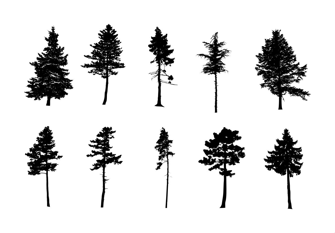 10 Pine Tree Silhouette Png Transparent Vol 3 Onlygfx Com