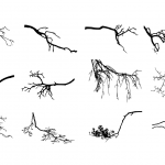 12 Tree Branch Silhouette (PNG Transparent) Vol. 3