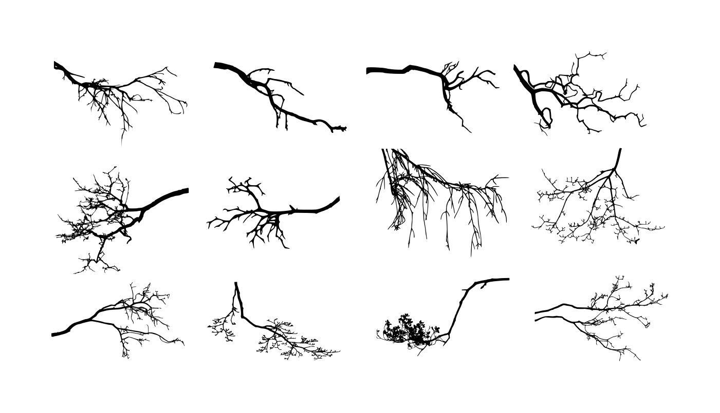 12 tree branch silhouette png transparent vol 3 onlygfx com