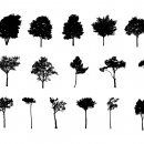 16 Tree Silhouette (PNG Transparent) Vol. 3
