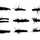 9 Grunge Banner Brush Stroke Splatter (PNG Transparent)